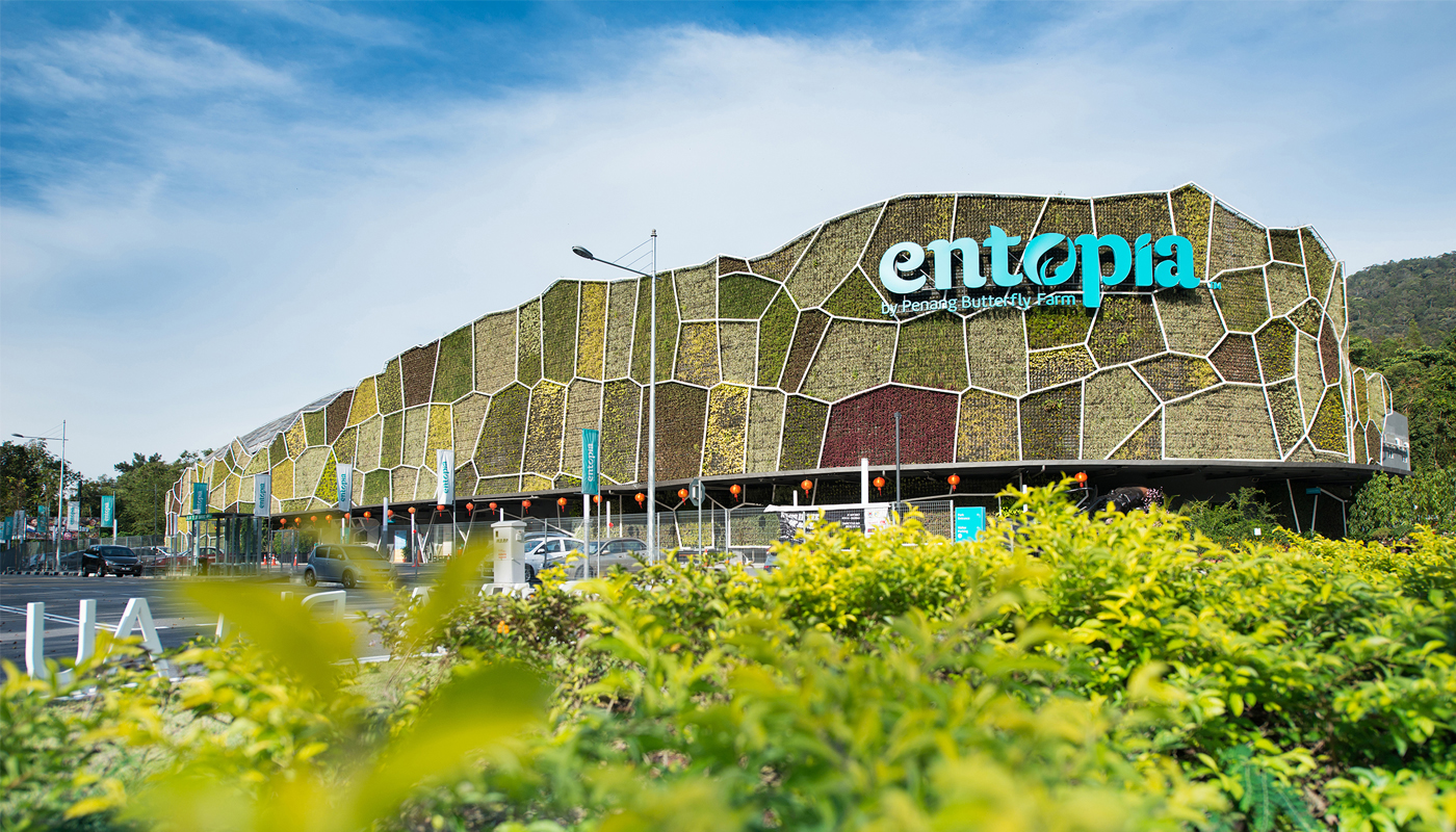 Image result for entopia